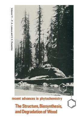 The Structure, Biosynthesis, and Degradation of Wood - Recent Advances in Phytochemistry 11 (Paperback)