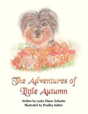 The Adventures of Little Autumn (Paperback)