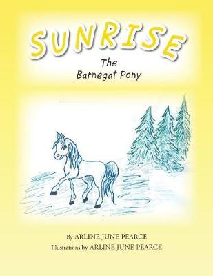 Sunrise the Barnegat Pony (Paperback)