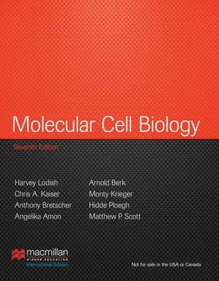 Molecular Cell Biology: International Edition (Hardback)