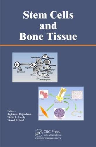 Stem Cells and Bone Tissue (Hardback)