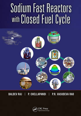 Sodium Fast Reactors with Closed Fuel Cycle (Hardback)
