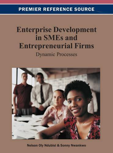 Enterprise Development in SMEs and Entrepreneurial Firms: Dynamic Processes (Hardback)
