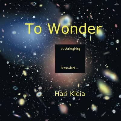 To Wonder (Paperback)