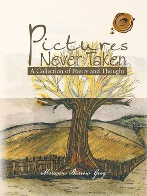 Pictures Never Taken: A Collection of Poetry and Thought (Paperback)