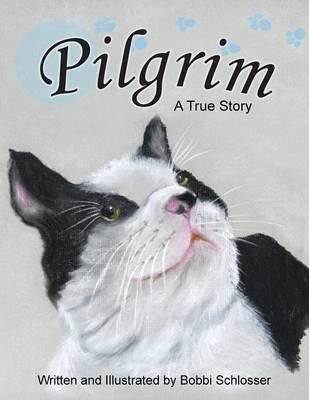 Pilgrim: A True Story (Paperback)