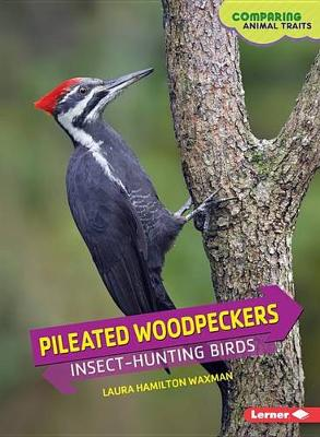 Pileated Woodpeckers: Insect-Hunting Birds - Comparing Animal Traits (Paperback)