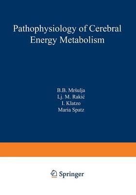Pathophysiology of Cerebral Energy Metabolism (Paperback)