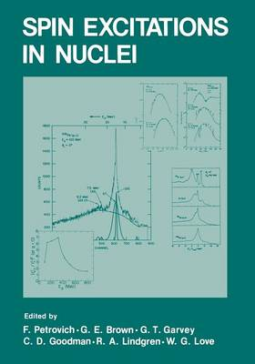 Spin Excitations in Nuclei (Paperback)