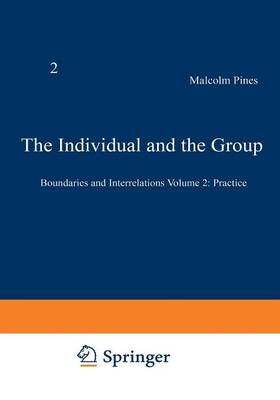 The Individual and the Group: Boundaries and Interrelations Volume 2: Practice (Paperback)