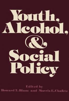 Youth, Alcohol, and Social Policy (Paperback)