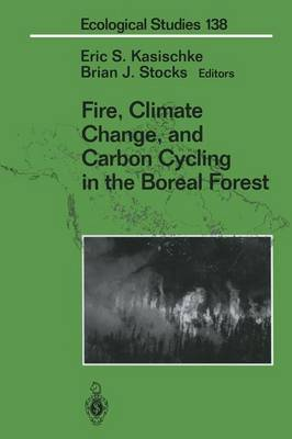 Fire, Climate Change, and Carbon Cycling in the Boreal Forest - Ecological Studies 138 (Paperback)