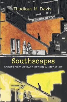 Southscapes: Geographies of Race, Region, and Literature - New Directions in Southern Studies (Paperback)