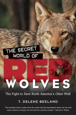 The Secret World of Red Wolves: The Fight to Save North America's Other Wolf (Paperback)