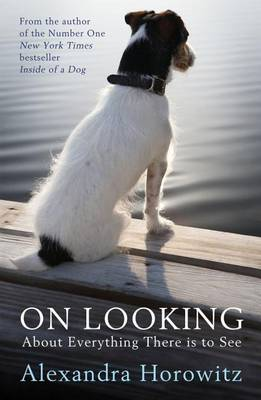 On Looking: About Everything There is to See (Paperback)