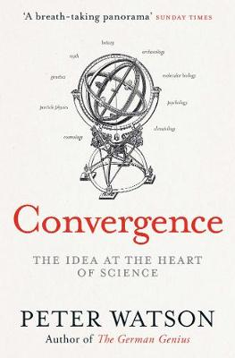 Convergence: The Deepest Idea in the Universe (Paperback)