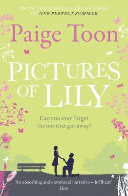 Pictures of Lily (Paperback)