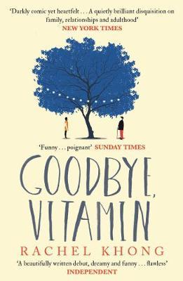 Goodbye, Vitamin (Paperback)