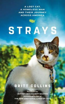 Strays: The True Story of a Lost Cat, a Homeless Man and Their Journey Across America (Paperback)