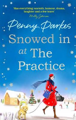 Snowed in at the Practice (Paperback)