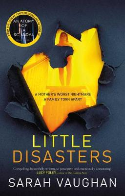 Little Disasters (Paperback)