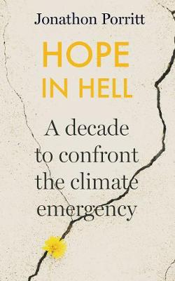 Hope in Hell: A decade to confront the climate emergency (Hardback)