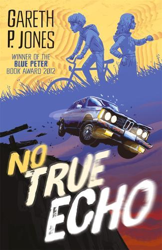 No True Echo (Paperback)