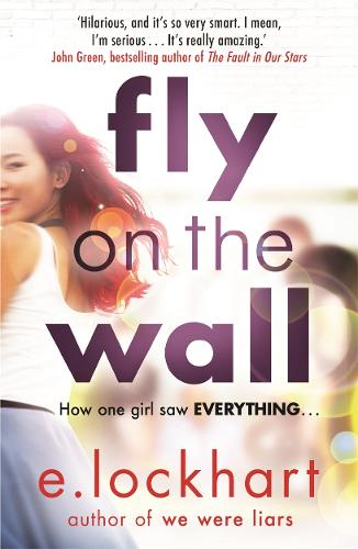 Fly on the Wall: From the author of the unforgettable bestseller, We Were Liars (Paperback)