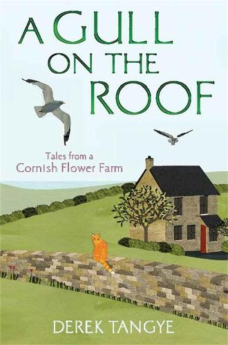 A Gull on the Roof: Tales from a Cornish Flower Farm - Minak Chronicles 1 (Paperback)