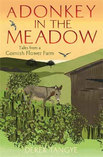 A Donkey in the Meadow: Tales from a Cornish Flower Farm - Minack Chronicles (Paperback)