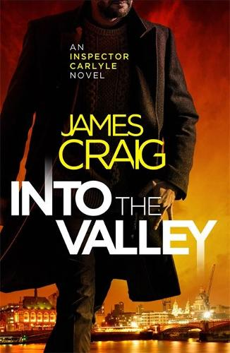 Into the Valley - Inspector Carlyle (Paperback)