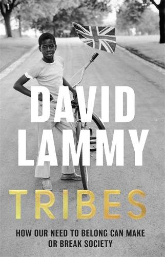 Tribes: A Search for Belonging in a Divided Society (Paperback)