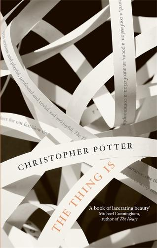 The Thing Is (Paperback)
