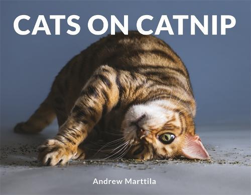 Cats on Catnip (Hardback)