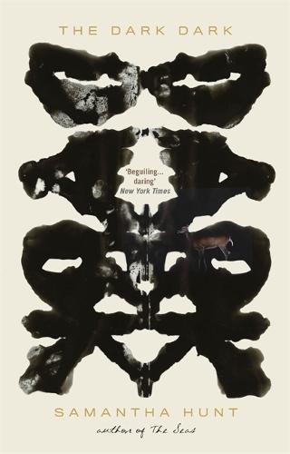 The Dark Dark (Paperback)