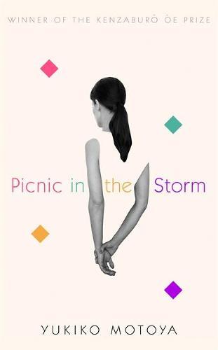 Picnic in the Storm (Hardback)