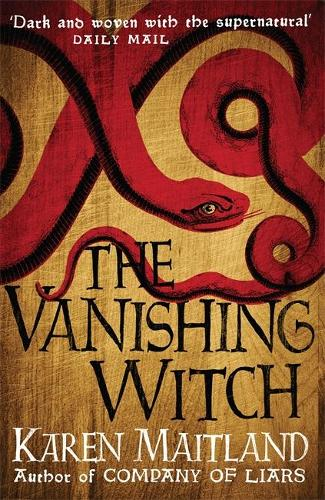 The Vanishing Witch: A dark historical tale of witchcraft and rebellion (Hardback)