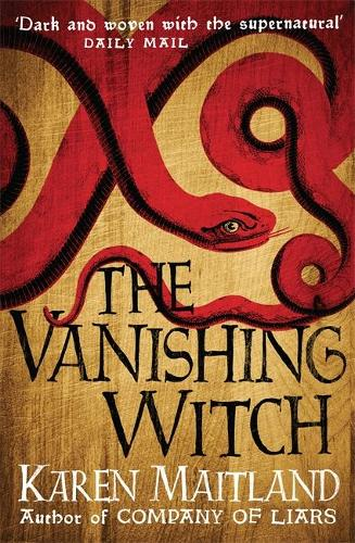 The Vanishing Witch: A dark historical tale of witchcraft and rebellion (Paperback)