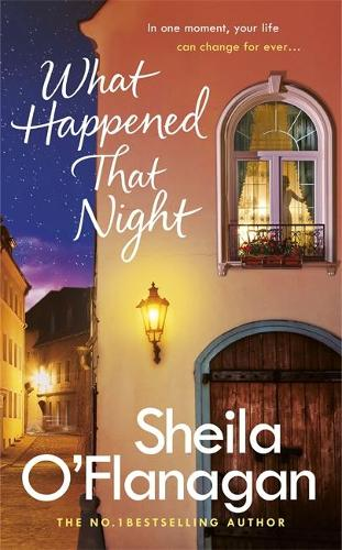 What Happened That Night: The page-turning holiday read by the No. 1 bestselling author (Hardback)