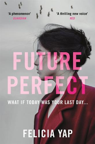 Future Perfect (Paperback)