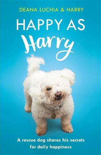 Happy as Harry: A rescue dog shares his secrets for daily happiness (Paperback)