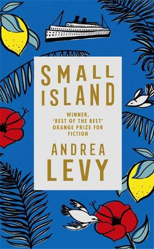 Small Island (Hardback)