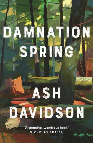 Damnation Spring (Hardback)