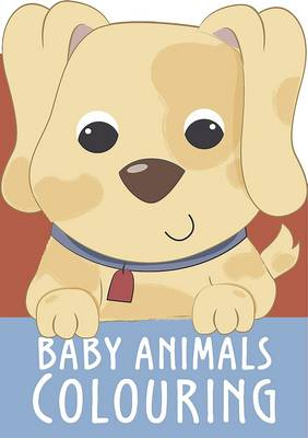 Baby Animals Colouring (Paperback)