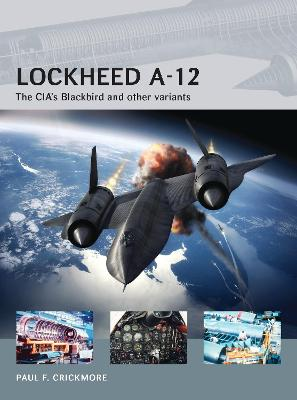 Lockheed A-12: The CIA's Blackbird and other variants - Air Vanguard (Paperback)
