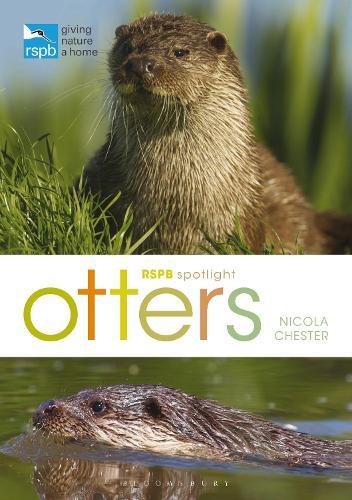 RSPB Spotlight: Otters - RSPB (Paperback)