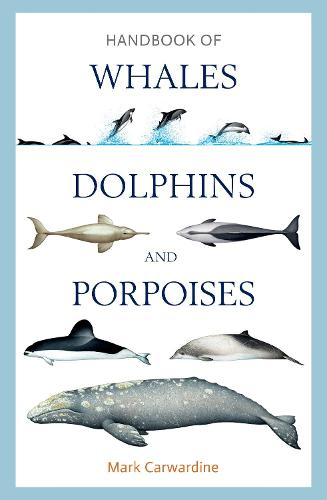 Handbook of Whales, Dolphins and Porpoises (Hardback)