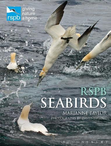 RSPB Seabirds - RSPB (Hardback)