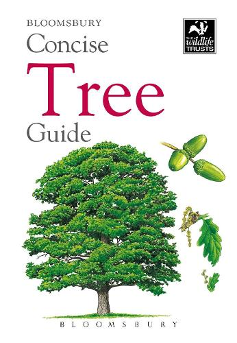 Concise Tree Guide - The Wildlife Trusts (Paperback)