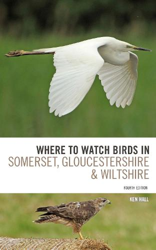 Where To Watch Birds in Somerset, Gloucestershire and Wiltshire (Paperback)